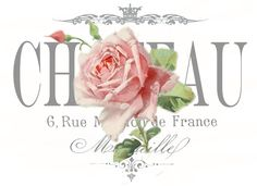 Vintage rose chateau transfer decoupage test Digital collage P1022 FREE to use