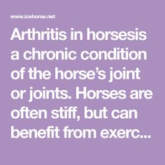 Arthritis in horsesis a chronic condition of the horse's joint or joints. Horses are often stiff, but can benefit from exercise and lots of walking and turn out. Managing arthritis can be successful with the help of your Vet, and even heating and icing of affected joints.