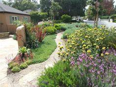 Gravel Path Through Garden