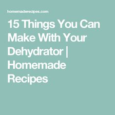 15 Things You Can Make With Your Dehydrator   Homemade Recipes