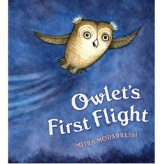 Great for owl or nocturnal animals storytime