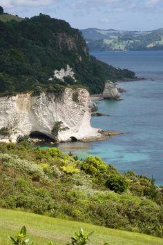 Stingray Cove - New Zealand