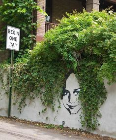 Artist Vinchen street art