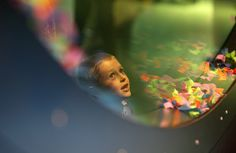 To je 4600 chytré zábavy u brněnského výstaviště. Mona Lisa, Science, Park, Life, Parks, Flag