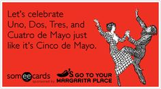 Lets celebrate Uno, Dos, Tres, and Cuatro de Mayo just like its Cinco de Mayo. Someecards, Haha Funny, Lol, My Motto, Love Holidays, Lets Do It, I Love To Laugh, E Cards, Laughing So Hard