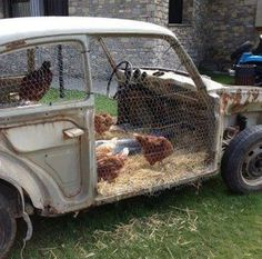 car hen house