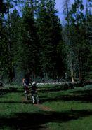 Lake Tahoe Mountain Bike Ride - Fallen Leaf Lake - South Shore
