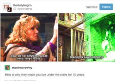 The Potter fandom is the gift that keeps on giving.