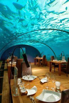 Underwater Restaurant, The Maldives photo via stacy