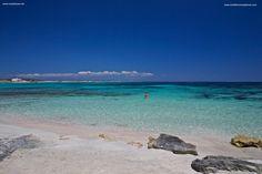 Playa des Canyer - Mediterránea Pitiusa - La Naviera de Formentera
