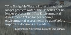 Former UN Advisor issues scathing report on Harper's legacy on water | The Council of Canadians