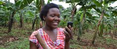 2015 Winners of UN Climate Solutions Awards Announced