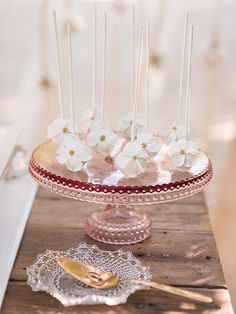 From our Campovida photo shoot, custom made edible dogwood flower cake pops, photo by Michele Beckwith Photography