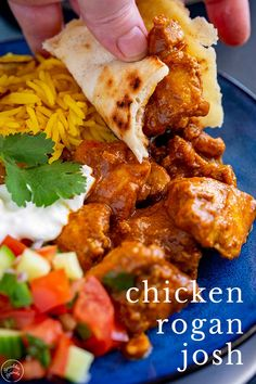 This Chicken Rogan Josh is an easy Indian chicken curry that is packed with flavor and tastes just like something from an Indian Restaurant. Indian Chicken Recipes, Easy Chicken Recipes, Indian Food Recipes, Asian Recipes, Healthy Recipes, Indian Foods, Savoury Recipes, Healthy Food