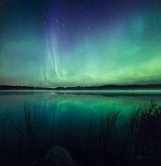"""Fotografié estas luces del Norte, también conocidas como Aurora Boreales, en el sur de Ostrobotnia, Finlandia entre los años 2013 y 2015."""""""