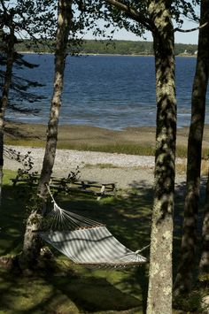 Just right for a nap looking out on Frenchman's Bay. Maine