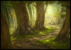magic the gathering forest - Google Search