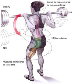 """Ejercicios de espalda: Flexiones de tronco al frente (o """"Buenos días"""")"""