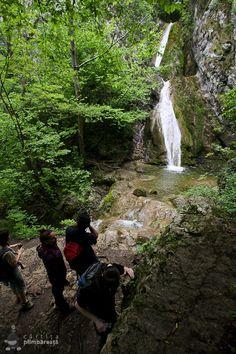 Turism Romania, Waterfall, Memories, Travel, Outdoor, Romania, Park, Love, Home