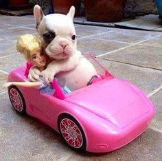 Ahh: he enjoy his trip with Barbie.