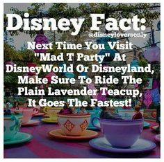 Disney Fact: Its True, my boyfriend looked it up before we took our daughter for her 1st trip to disneyland.