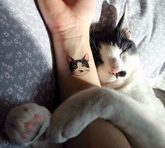 65 Amazing Cat Tattoo Designs | Pictures of Cats - Band of Cats