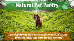 "Natural Pet Pantry Raw Dog Food  We switched our dogs to Natural Pet Pantry ""Seattle's Original"" to save money and got a ton more!"