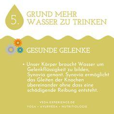 Wasserkur mit HydraMax Chutneys, Ayurveda, Lunge, Water Cycle, Drinking Water, Health, Life, Chutney