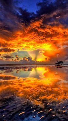 "beautymothernature: ""Sunrise on a Lake mother nature moments "" Landscape Photography, Nature Photography, Sunrise Photography, Scenic Photography, Beautiful Places, Beautiful Pictures, Beautiful Beautiful, Beautiful Scenery, Absolutely Gorgeous"