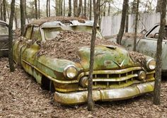 1954 #Cadillac turning to #Nature. #Vintage #Classic #Beauty #RustinPeace