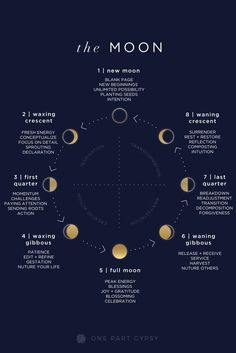 Infographic Design A comprehensive lunar guide describing each of the moon phases and how to best h