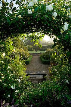 Mariners garden, berkshire. Designer fenja anderson - view into the rose garden through an arch (Moon gate) Of rose 'city of york' to the wa...