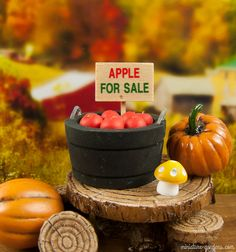 Mini fall fairy garden accessories for your mini fairy gardens.