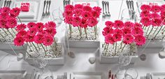 BEAUTIFUL!!!! I think I just found my centerpieces!!! Anemone - Anemone/Gallery Of Wedding Flowers
