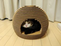 Since all cats seem to like hiding in cardboard boxes anyway, why not make this?