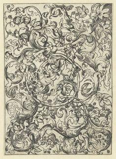 Meester FVB   Ornament met hopranken, Meester FVB, Martin Schongauer, 1475 - 1500  