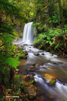 Hopetoun Falls, Victoria, Australia