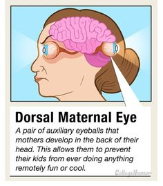10 Secret Body Parts You Didnt Know You Had - Dorsal Maternal Eye Unusual Facts, College Humor, Have A Laugh, Just For Laughs, Body Parts, Back Pain, Funny Posts, I Laughed, Knowing You