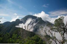 Hike the highest point on the island of Cuba: Pico Turquino.