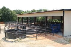 With a variety of proven designs versatile enough for any size operation, Priefert offers you the opportunity to choose the system that best fits your herd. Farm Fence, Farm Barn, Show Cattle Barn, Cattle Ranch, Cattle Corrals, Barn Layout, Horse Barn Designs, Raising Cattle, Longhorn Cattle
