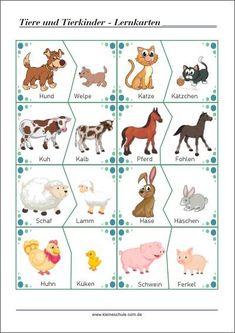 Tiere und ihre Kinder: Lernkarten - Lese- und Sprachförderung für Vorschul- un...  -  #fuer #Ihre #Kinder #Lernkarten #Lese #Sprachförderung #tiere #und #Vorschul
