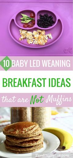 10 BLW breakfast ideas that are not muffins - Feeding Bytes These are 10 baby led weaning . - 10 BLW breakfast ideas that are not muffins – Feeding Bytes These are 10 baby led weaning … - Blw Breakfast Ideas, Baby Led Weaning Breakfast, Baby Breakfast, School Breakfast, Breakfast Options, Savory Breakfast, Baby Muffins, Muffins For Babies, Baby First Foods