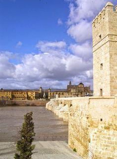 Torre de la Calahorra y Puente Romano. España.