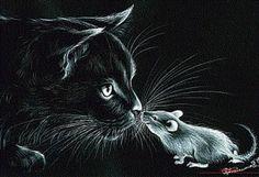 Black And White Art Drawing, Black Cat Painting, Black Paper Drawing, Painting Fur, Black White Art, Black And White Wallpaper Iphone, Fluffy Black Cat, Scratchboard Art, Frida Art
