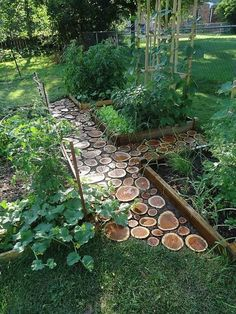 Diy garden paths of  wood slabs. A natural and rustic alternative to stone or paving.
