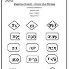 Hebrew vocabulary from the Jewish Torah parsha Noah- Parshat Noach is used to identify and categorize nouns (people, places, things) in the parsha....