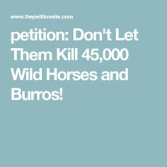 petition: Don't Let Them Kill 45,000 Wild Horses and Burros!