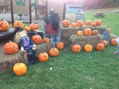 Here are the entries for the pumpkin carving contest