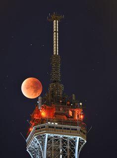 Super Blood Moon Photos - Combination Supermoon and Lunar Eclipse [Eiffel Tower, Paris,France]