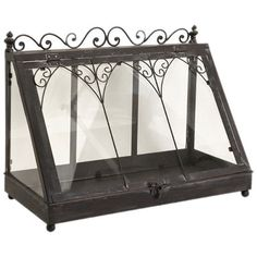 80.   Wrought iron and glass terrarium with scrollwork trim.            Product: TerrariumConstruction Material: Wrough...